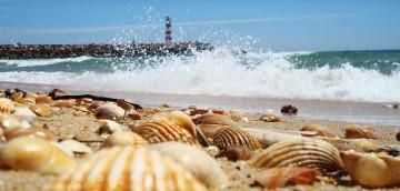Faro e a sua maravilhosa Ilha Deserta